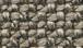 578 Taupe Kenya