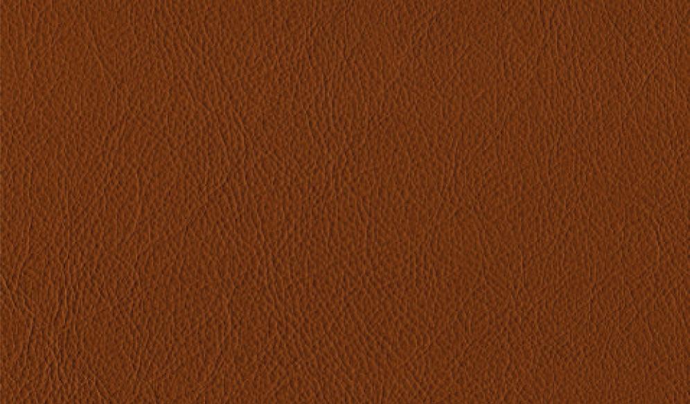 Leder Royal - Saddle brown