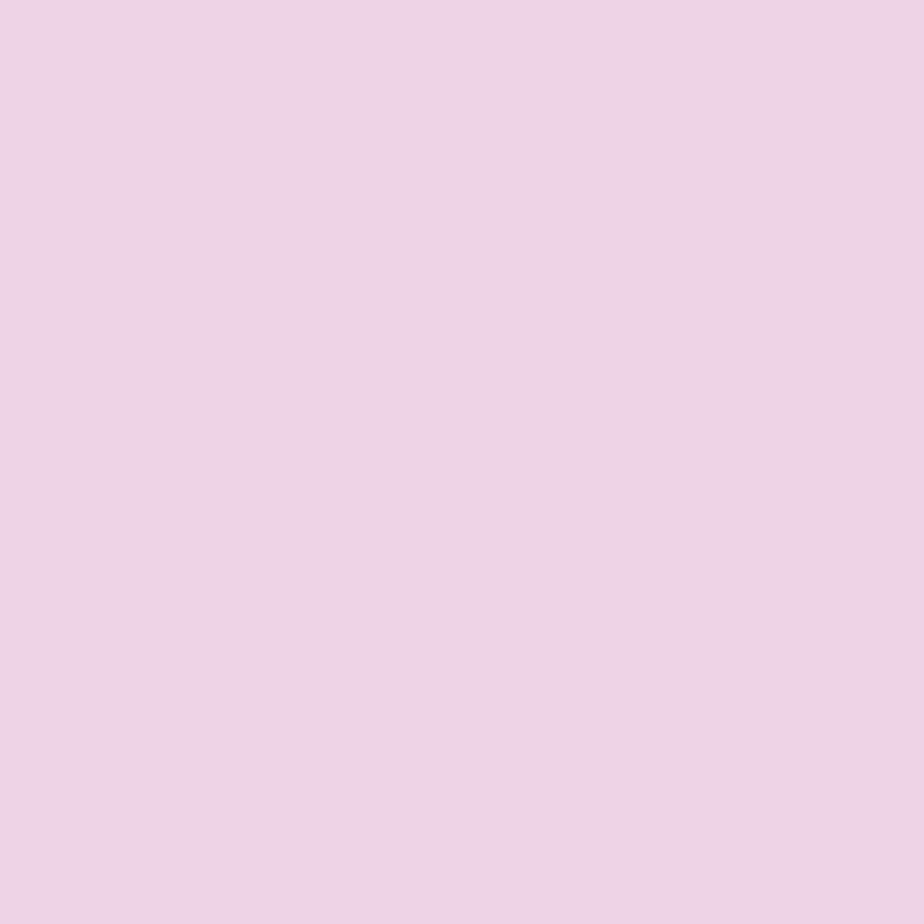 rosa 63