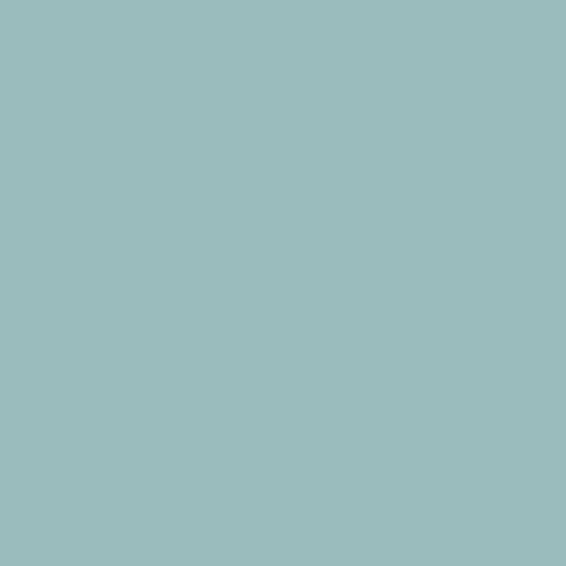 opal 31